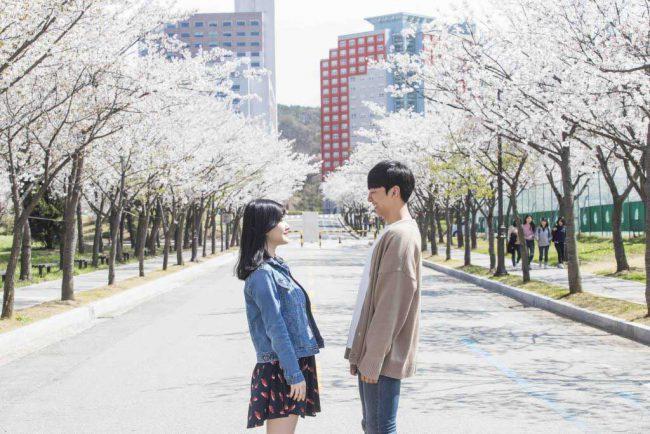 Thực trạng du học Hàn Quốc tại Nghệ An