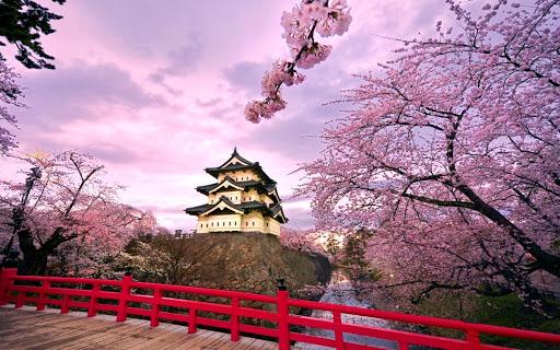 Du học Nhật Bản nên đi vùng nào để vừa học vừa làm tốt nhất