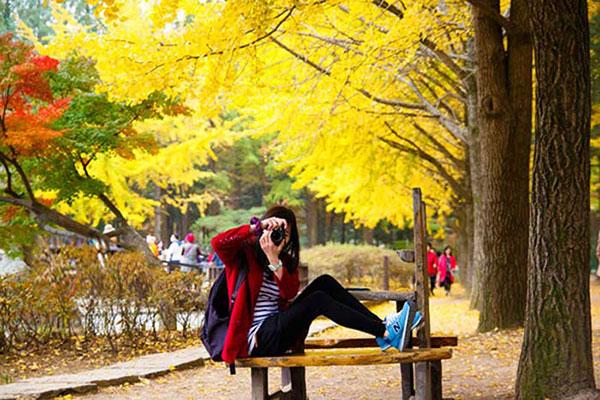 Nên đi du lịch Hàn Quốc mùa thu hay mùa đông?