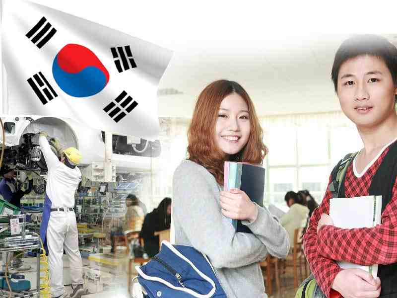 Thực tế du học Hàn Quốc ngành gì dễ xin việc?