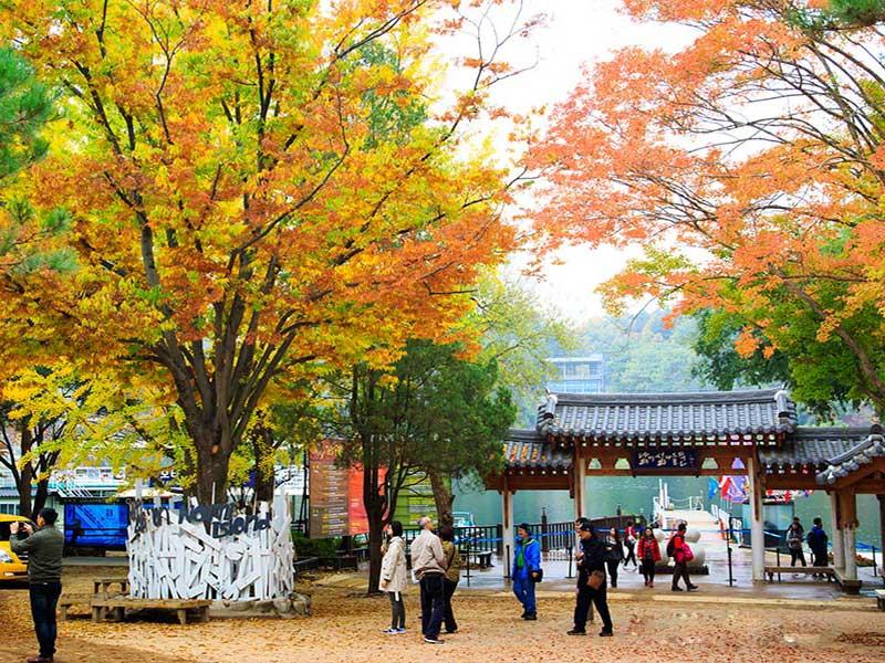 """Du lịch đảo Nami Hàn Quốc – những địa điểm bạn nhất định phải """"ghé thăm"""""""