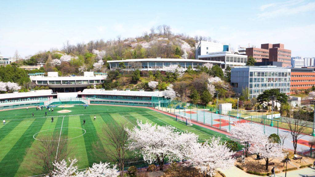 Khuôn viên trường Đại học Sogang đẹp như những thước phim thanh xuân vườn trường Hàn Quốc