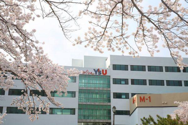 Đại học Youngsan Hàn Quốc – Youngsan University – Thông tin tổng quan