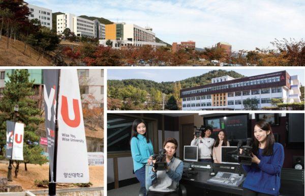 Đại học Youngsan Hàn Quốc - Youngsan University – Thông tin tổng quan