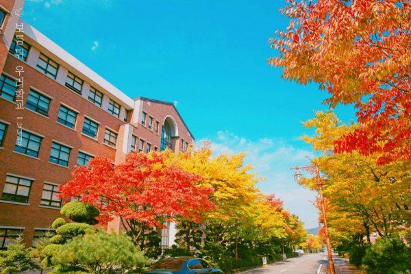 Đại học NamSeoul Hàn Quốc – TOP 1 đại học tốt nhất khu vực miền Trung